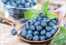 Blueberries – wild or cultivated they're delicious