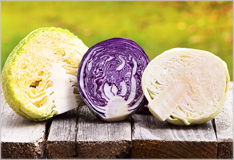 Cabbage cultivars – healthy, versatile and cheap!